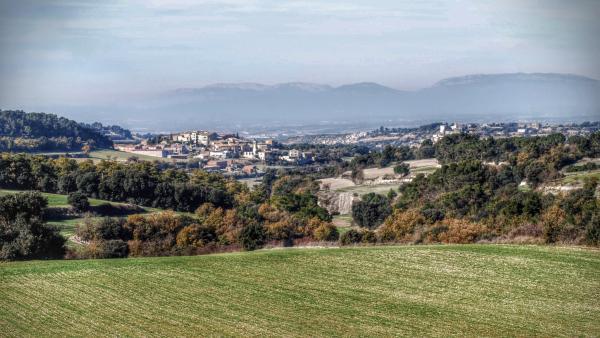 Els colors de la Segarra: la tardor