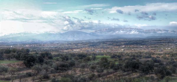 22.11.2015 Paisatge de tardor  Hostafrancs -  Ramon Sunyer