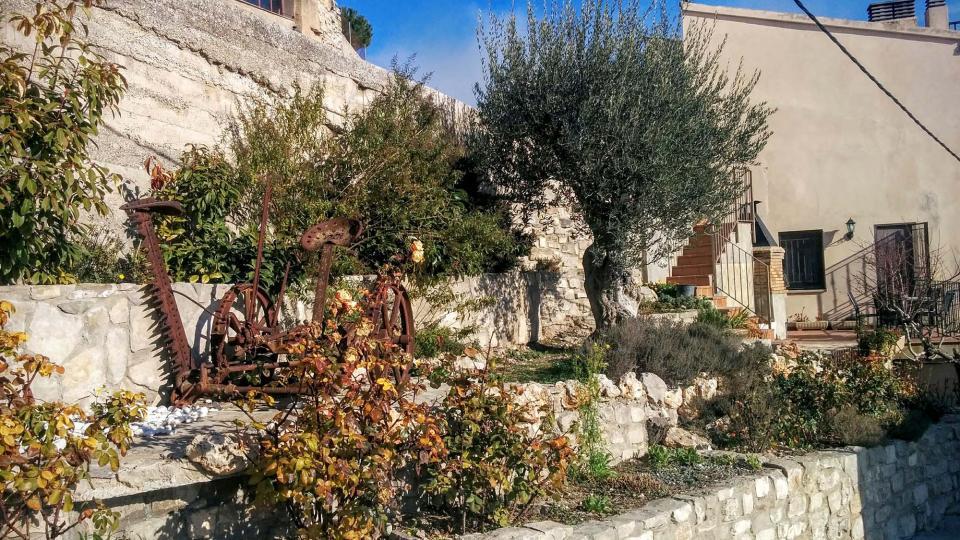 13.12.2015 jardí  Talavera -  Ramon Sunyer