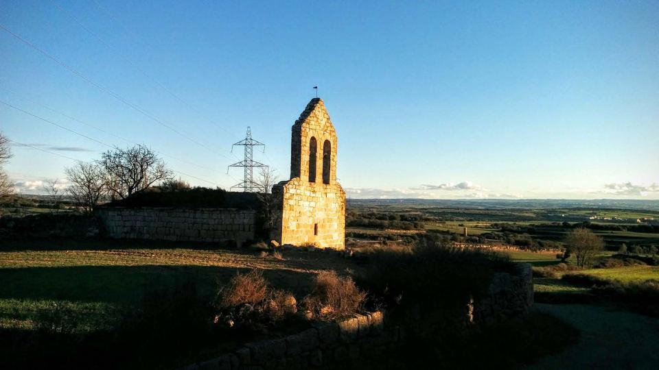 05.01.2016 Sant Pere de les Sitges  Florejacs -  Ramon Sunyer
