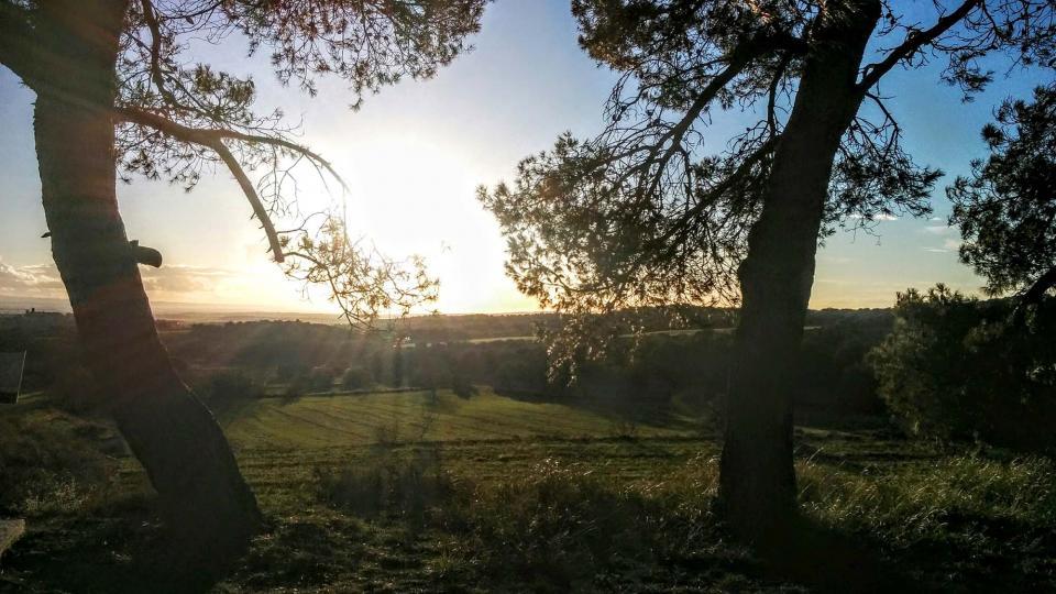 05.01.2016 paisatge  Florejacs -  Ramon Sunyer
