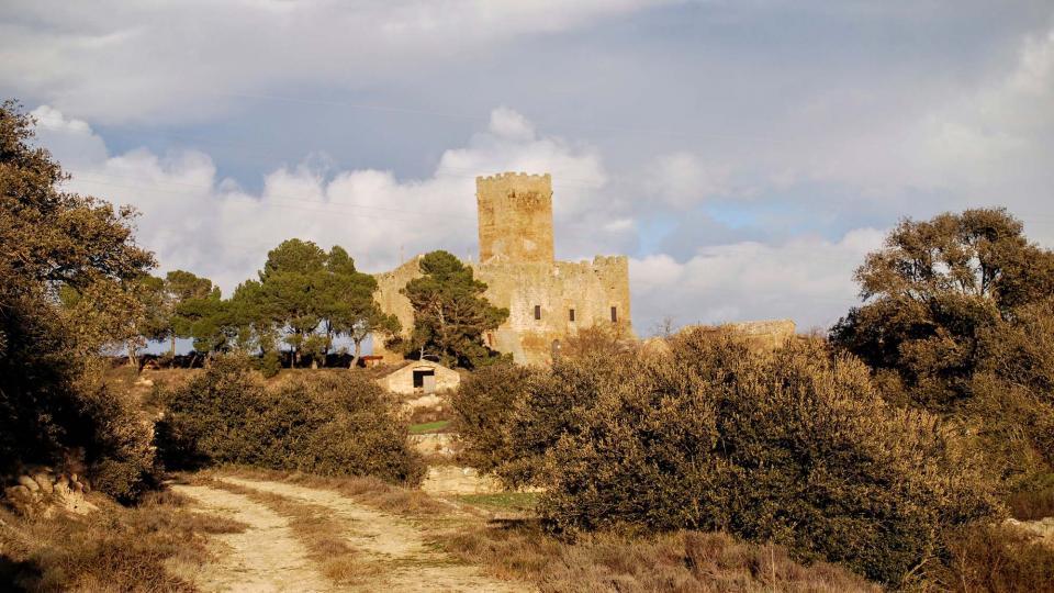 05.01.2016 les Sitges  Florejacs -  Ramon Sunyer
