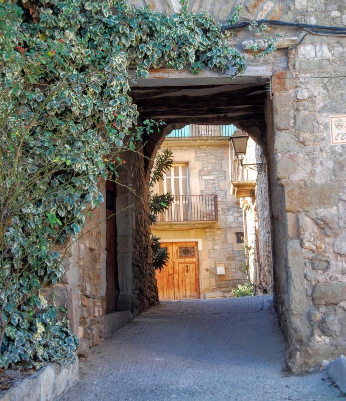 24.01.2016 portal  El Canós -  Ramon Sunyer