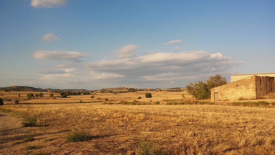27.08.2014 paisatge  Concabella -  Ramon Sunyer