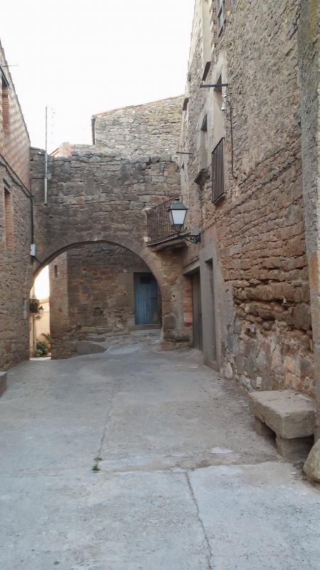 27.08.2014 portal  Pelagalls -  Ramon Sunyer