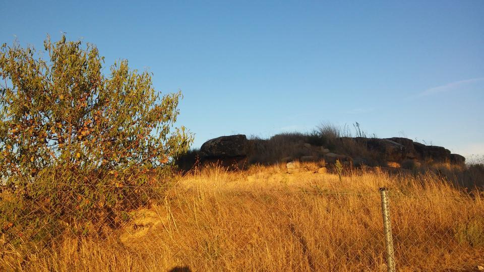 13.09.2014 poblat ibèric  Concabella -  Ramon Sunyer
