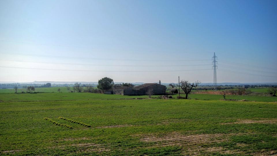 24.01.2016 paisatge  La Cardosa -  Ramon Sunyer