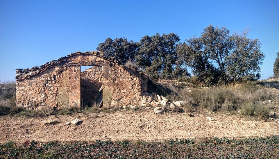 24.01.2016 cabana  La Cardosa -  Ramon Sunyer