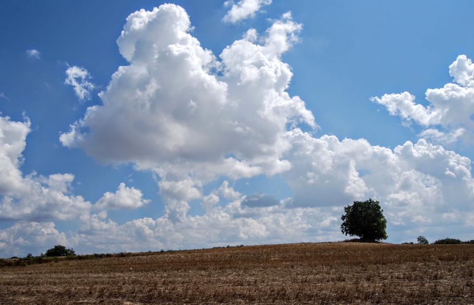 23.08.2015 paisatge  Comabella -  Ramon Sunyer