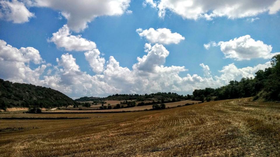23.08.2015 paisatge  El Far -  Ramon Sunyer