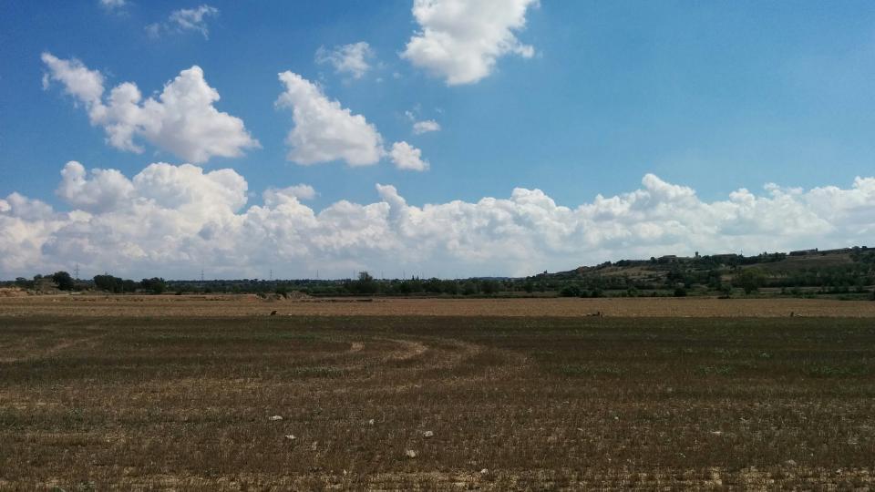 23.08.2015 paisatge  El Llor -  Ramon Sunyer