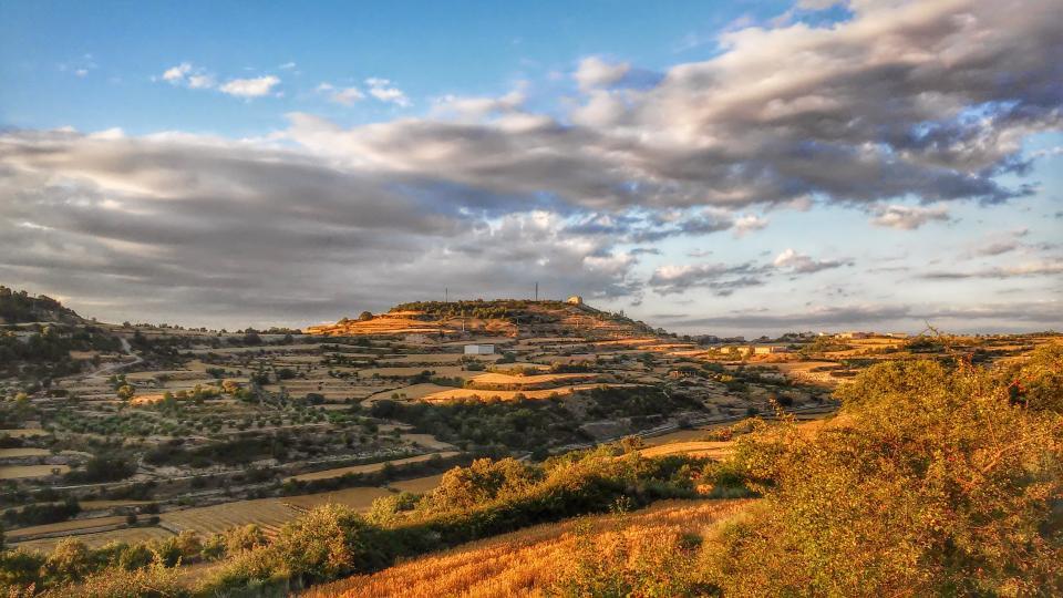 11.07.2014 paisatge  La Guàrdia Lada -  Ramon Sunyer