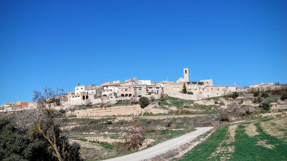 07.02.2016 vista sud  Montoliu de Segarra -  Ramon Sunyer