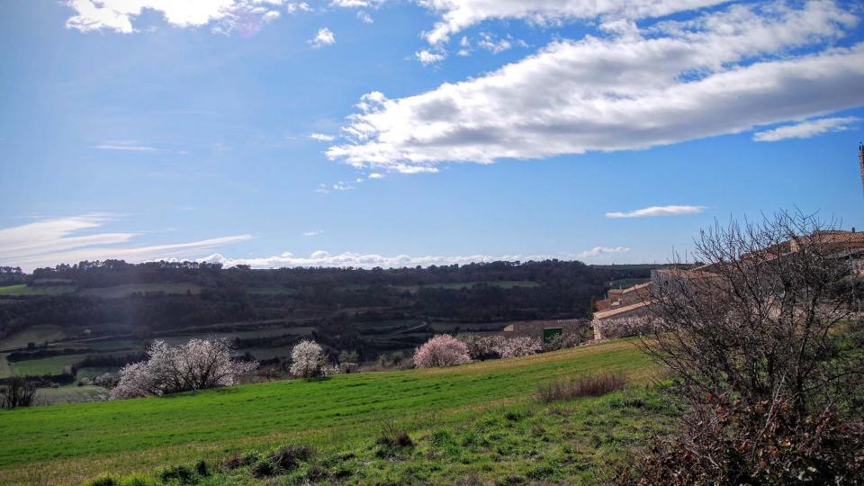 07.02.2016 paisatge  Montoliu de Segarra -  Ramon Sunyer