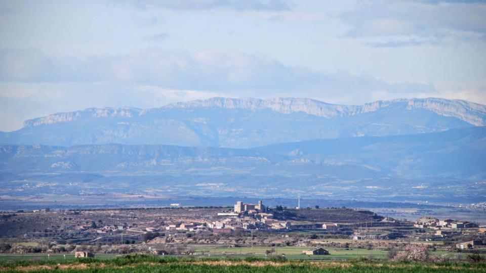 07.02.2016 Amb el Montsec de fons  La Curullada -  Ramon Sunyer
