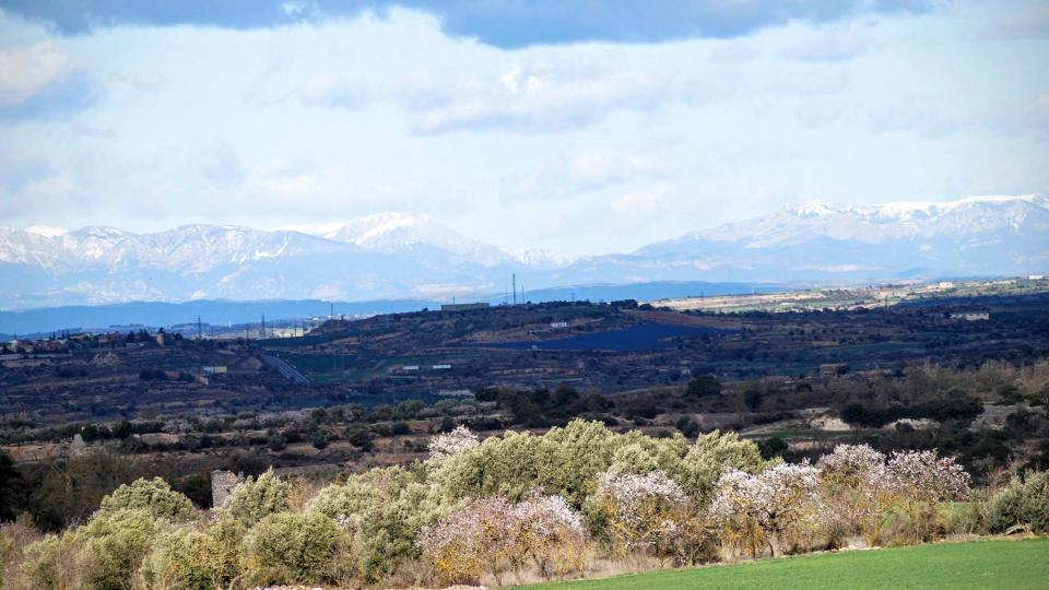 07.02.2016 Amb el Pirineu de fons  -  Ramon Sunyer
