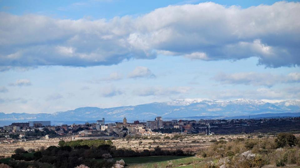 07.02.2016 Amb el Pirineu de fons  Cervera -  Ramon Sunyer