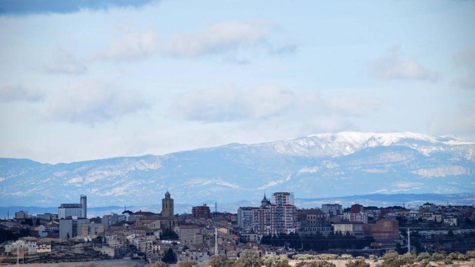 08.02.2016 Amb el Pirineu de fons  Cervera -  Ramon Sunyer
