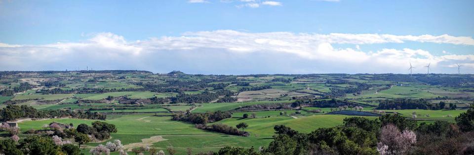 08.02.2016 Paisatge de la Vall d'Ondara  Talavera -  Ramon Sunyer