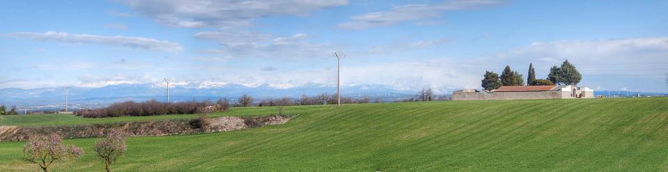 08.02.2016 Mirant el Pirineu  Talavera -  Ramon Sunyer