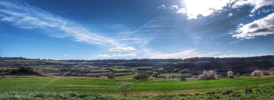 08.02.2016 paisatge  Montoliu de Segarra -  Ramon Sunyer