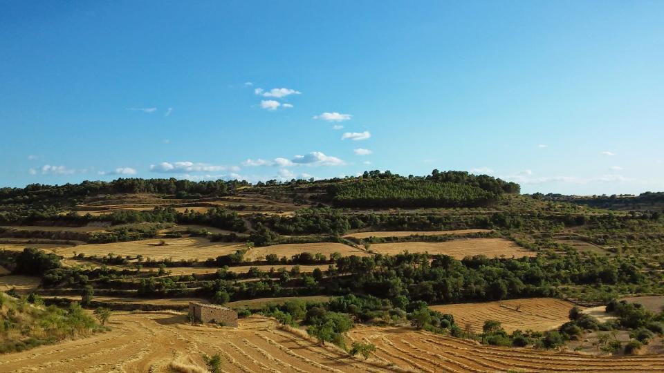 12.07.2014 paisatge  Montornès de Segarra -  Ramon Sunyer