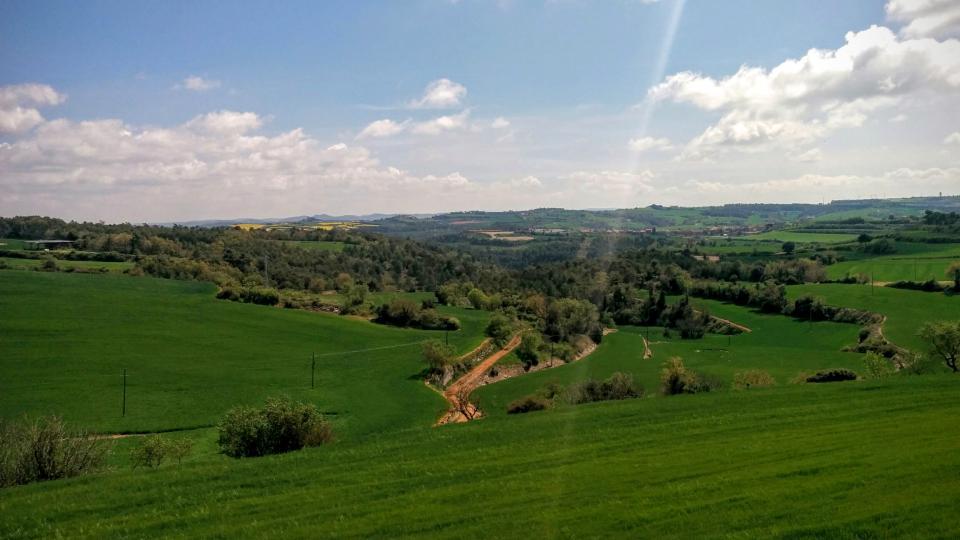 19.04.2015 paisatge  La Tallada -  Ramon Sunyer