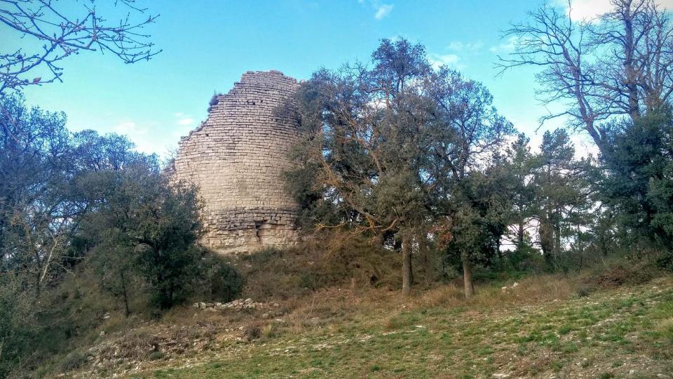 14.02.2016 Torre ( s. XI-XII)  Gàver -  Ramon Sunyer