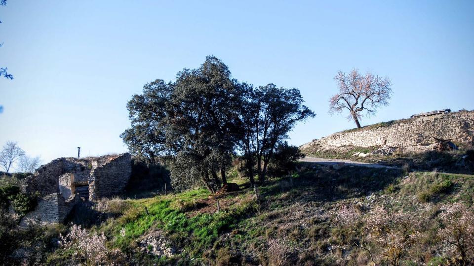 17.02.2016 paisatge  Briançó -  Ramon Sunyer