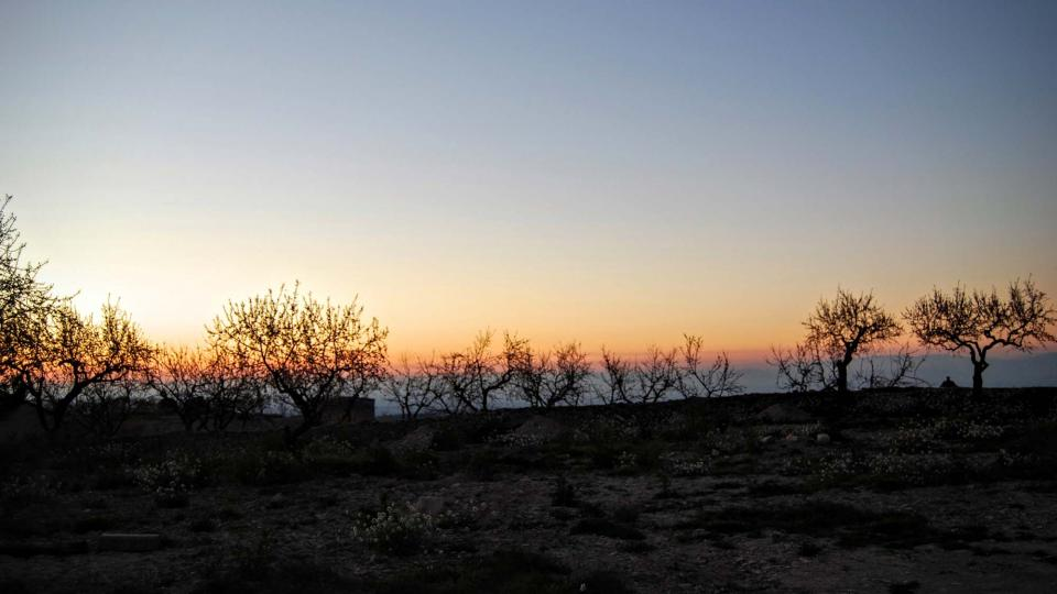 20.02.2016 capvespre  L'Ametlla de Segarra -  Ramon Sunyer