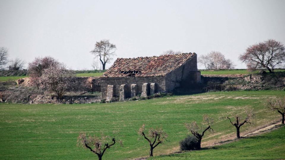 21.02.2016 cabana de teula  L'Ametlla de Segarra -  Ramon Sunyer