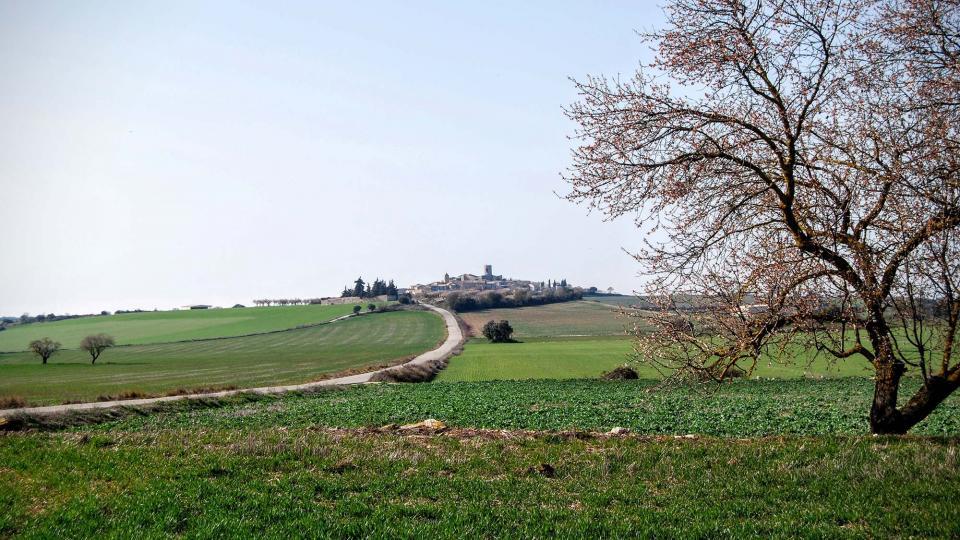 21.02.2016 vista est  L'Ametlla de Segarra -  Ramon Sunyer