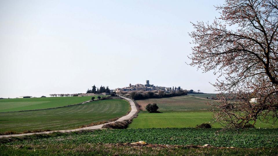 21.02.2016 vista  L'Ametlla de Segarra -  Ramon Sunyer