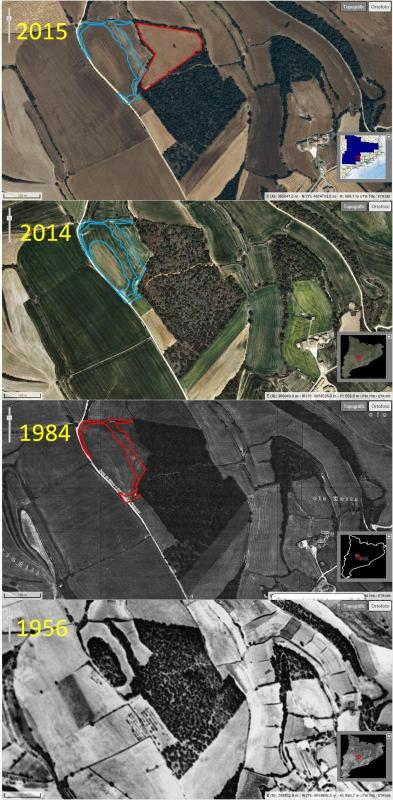 evolució de les rompudes al Bosc del Senyor (Melió, Sant Guim de Freixenet) 1956 - 2015 -