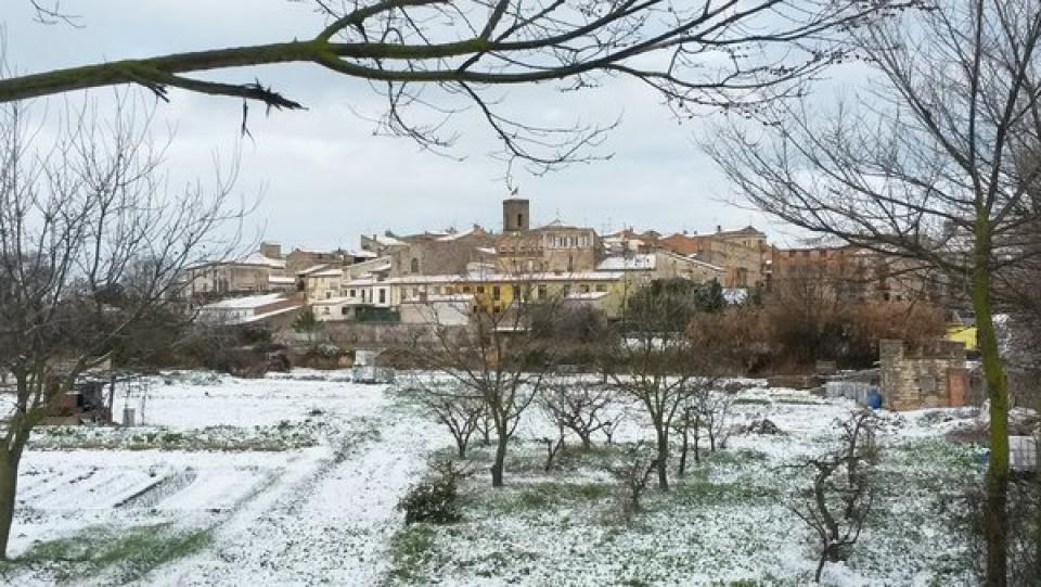 27.02.2016   Tarroja de Segarra -  Jm Santesmasses
