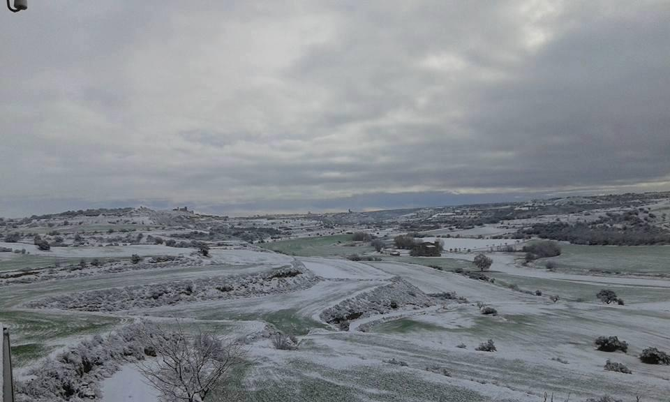 27.02.2016   Ribera d'Ondara -  Rosa Martí
