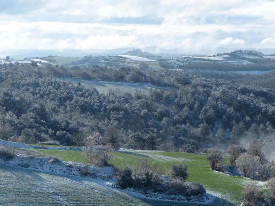 28.02.2016 Panoràmica dels boscos de La Tallada amb Argençola al fons.  La Tallada -  Daniel Espejo Fraga