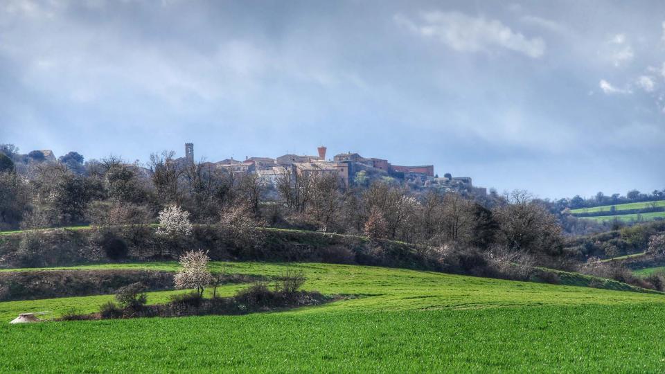 06.03.2016 paisatge  Vicfred -  Ramon Sunyer