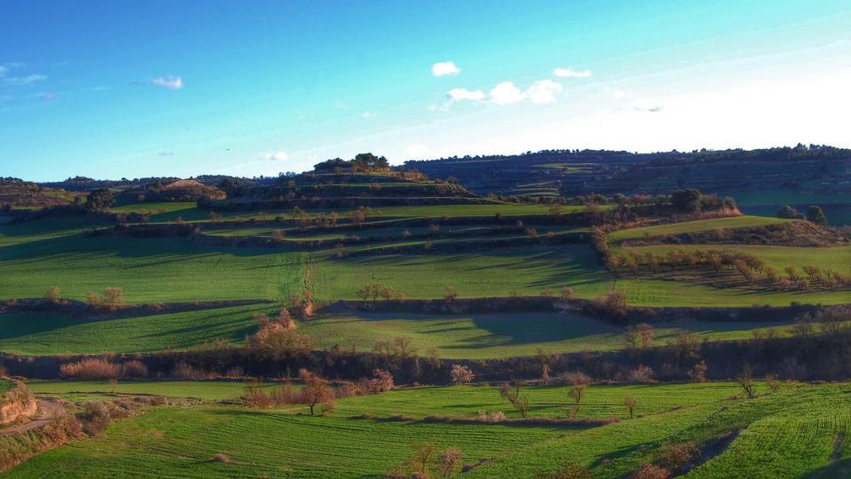 06.03.2016 paisatge  La Guàrdia Lada -  Ramon Sunyer
