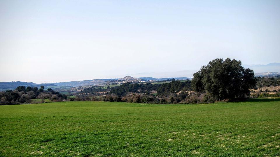 21.02.2016 paisatge  Vilagrasseta -  Ramon Sunyer