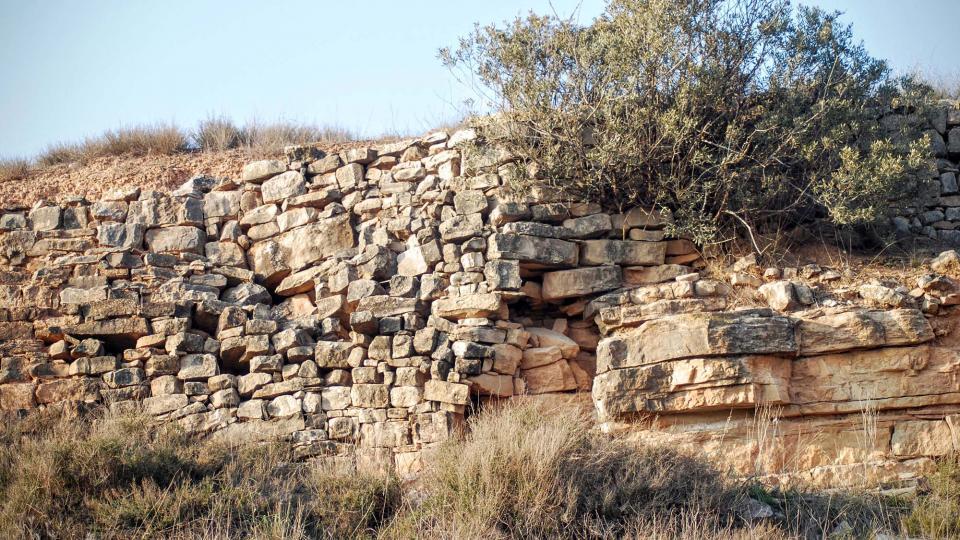 13.03.2016 marges de pedra seca  La Móra -  Ramon Sunyer