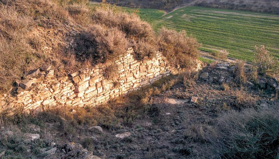 13.03.2016 Jaciment íber Pla de les Tenalles  La Móra -  Ramon Sunyer