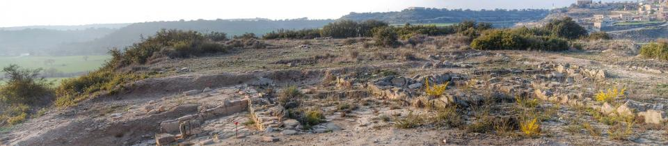 13.03.2016 Pla de les Tenalles  La Móra -  Ramon Sunyer