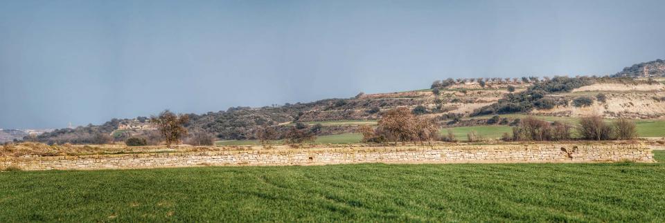 13.03.2016 Les parets de pedra seca embelleixen els marges de la segarra  La Móra -  Ramon Sunyer