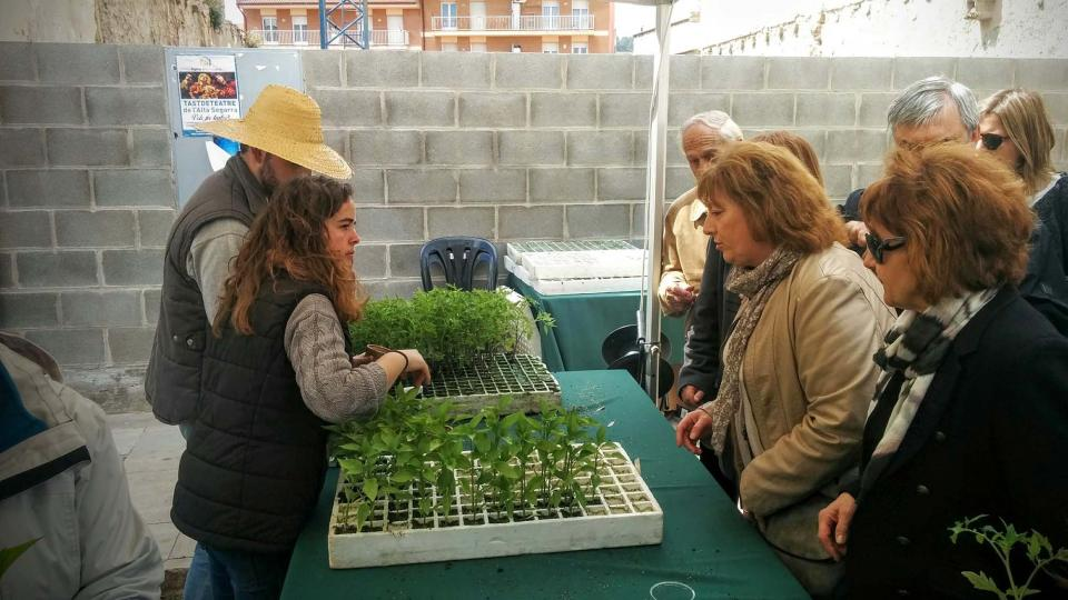10.04.2016 regal de planta d´hort ecològic  Calaf -  Ramon Sunyer