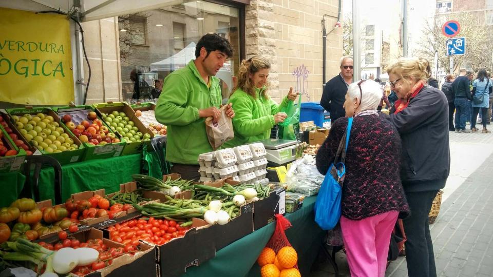 10.04.2016 verdures  Calaf -  Ramon Sunyer