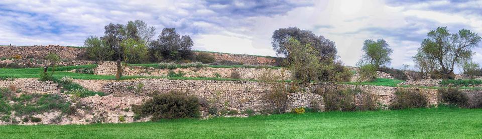 10.04.2016   Viver de Segarra -  Ramon Sunyer