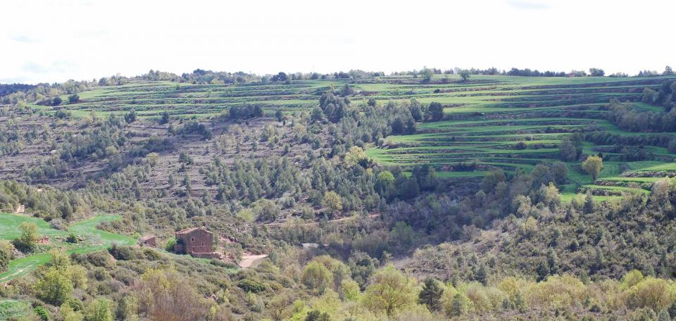 17.04.2016 Mas  Sant Pere del Vim -  Ramon Sunyer