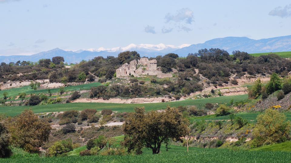 24.04.2016 Mont-ros  Sant Ramon -  Ramon Sunyer