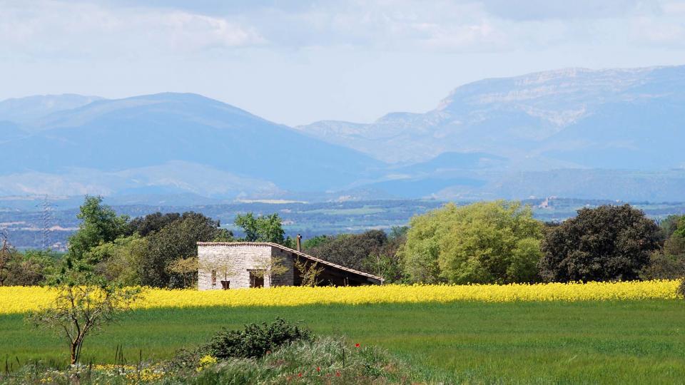 24.04.2016 cabana  Sant Ramon -  Ramon Sunyer